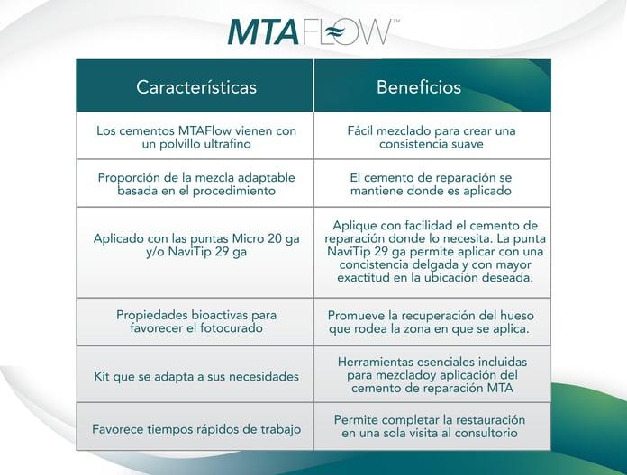 MTA-Flow-cuadro